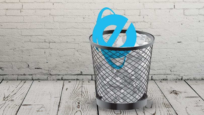 internet explorer logo in bin